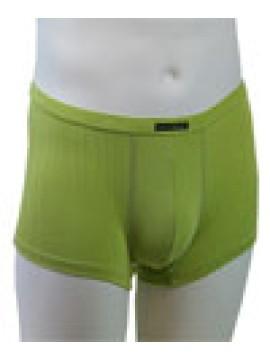 Pegasos Shorts