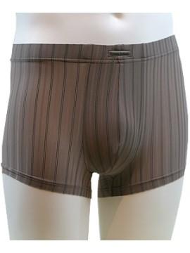 Perseus Shorts